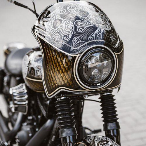 Harley-Davidson Fairing Kit For FXDL FXDX FXDB 06-16
